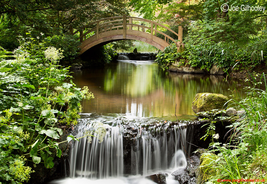 Joe gilhooley photography japanese water garden at stobo for Stobo water gardens