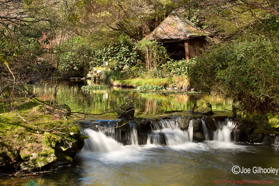 Joe gilhooley photography stobo japanese water garden for The water garden